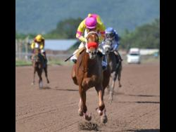 EARN YOUR STRIPES (Robert Halledeen) scoring a runaway win over 1600 metres at Caymanas Park on Saturday, February 9, 2019